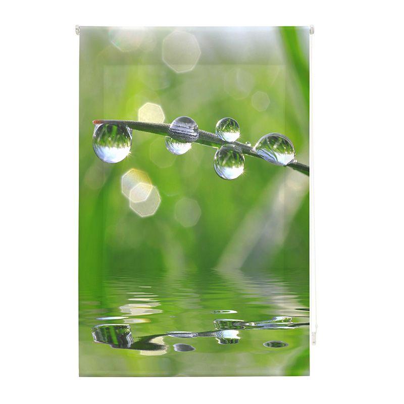 Estor enrollable impresión digital zen agua en rama
