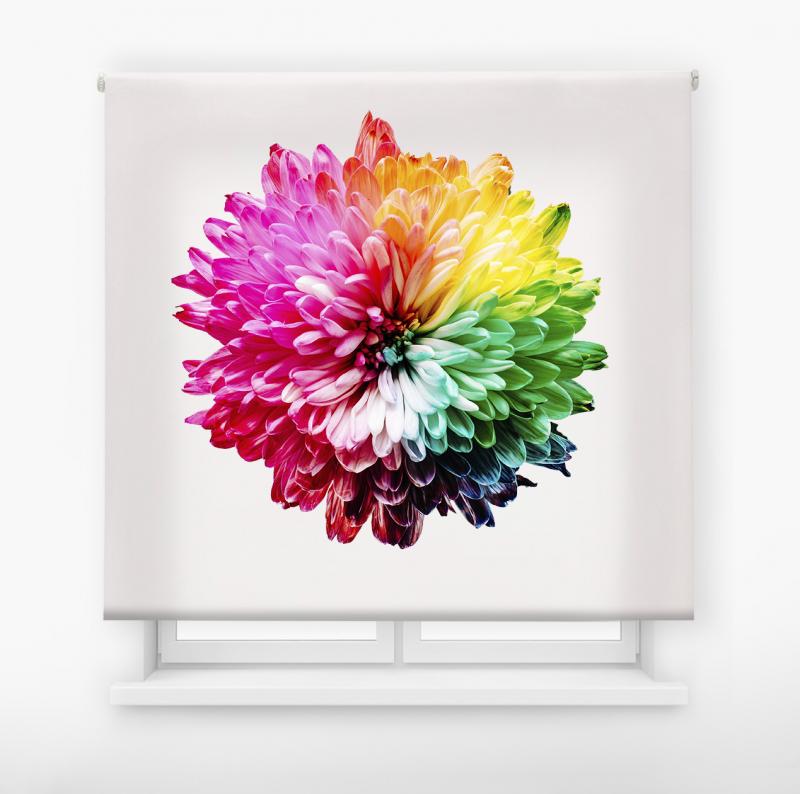 estor enrolalble digital cualquier ambiente /floral 25