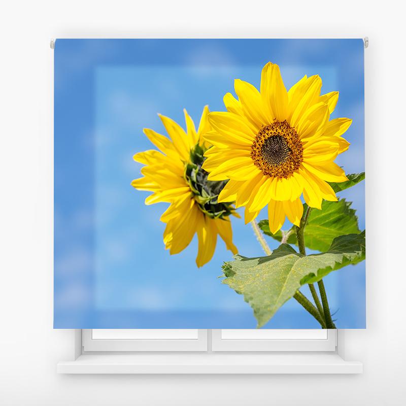 estor enrolalble digital cualquier ambiente /floral 46