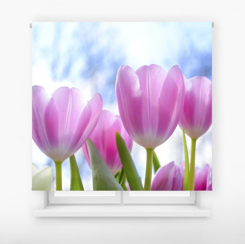 estor enrolalble digital cualquier ambiente /floral 32