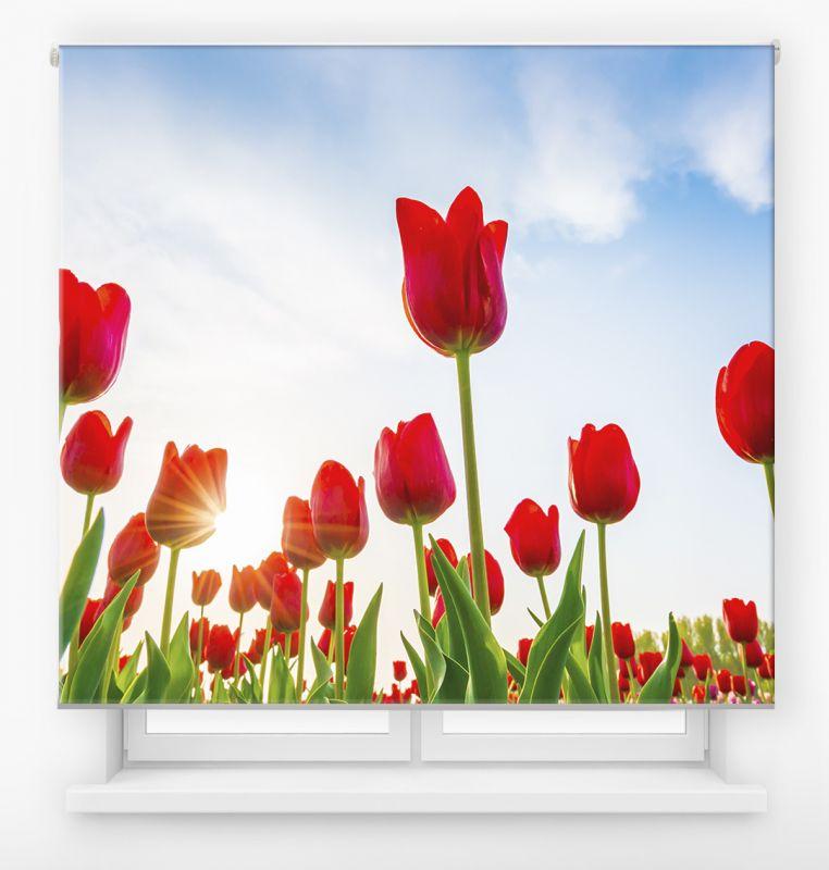 estor enrollable digital cualquier ambiente /floral 52