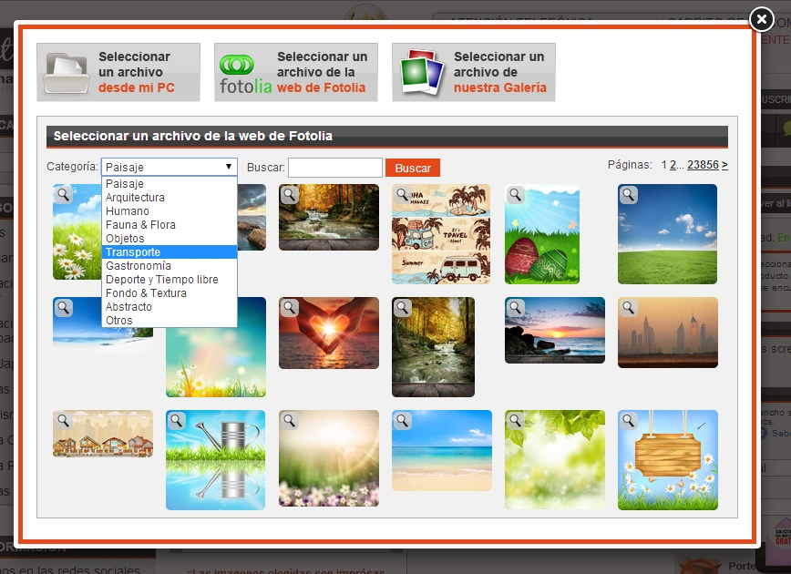 http://www.estoresbaratos.com/d175/comprar-estor-fotografico-fabricado-a-medida-diseno-personalizado-catalogo-2