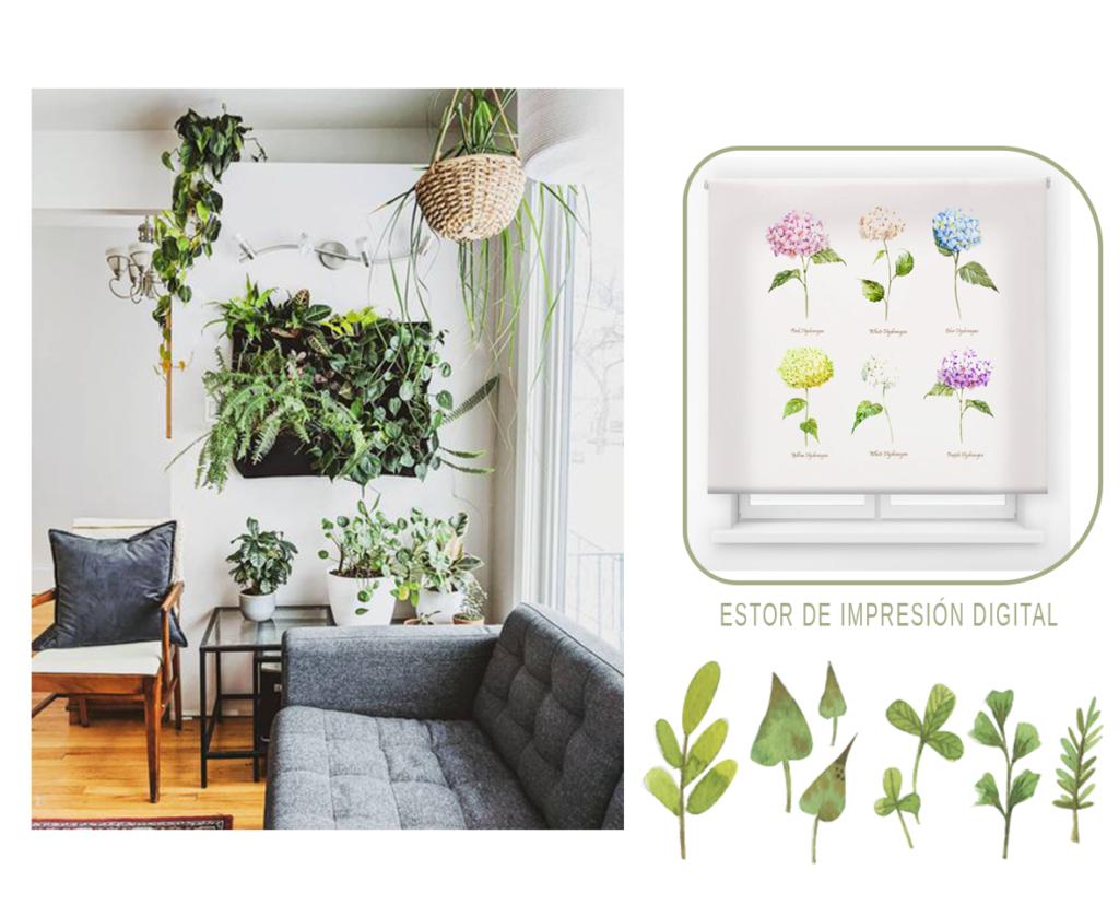 Plantas para decorar tu salón