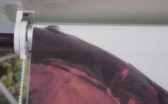 Enrollable Fotográfico Impresión digital